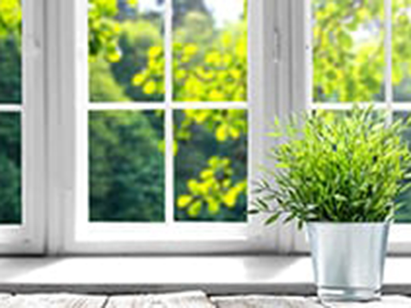Healthy Home & Building